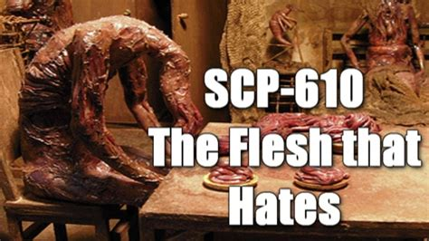 SCP-610 The Flesh that Hates   object class keter