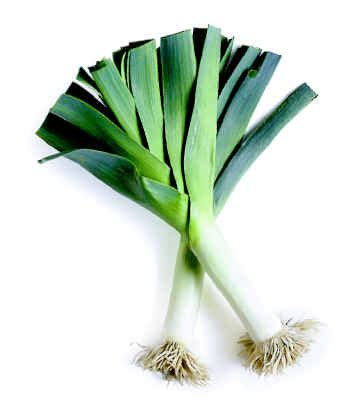 Leeks - Nutrition Facts, Health Benefits, Recipes and